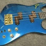 kamel chenaouy/Apex bass