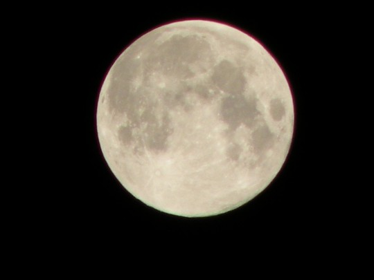 「中秋の名月」