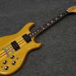 AUSTIN / through neck guitar